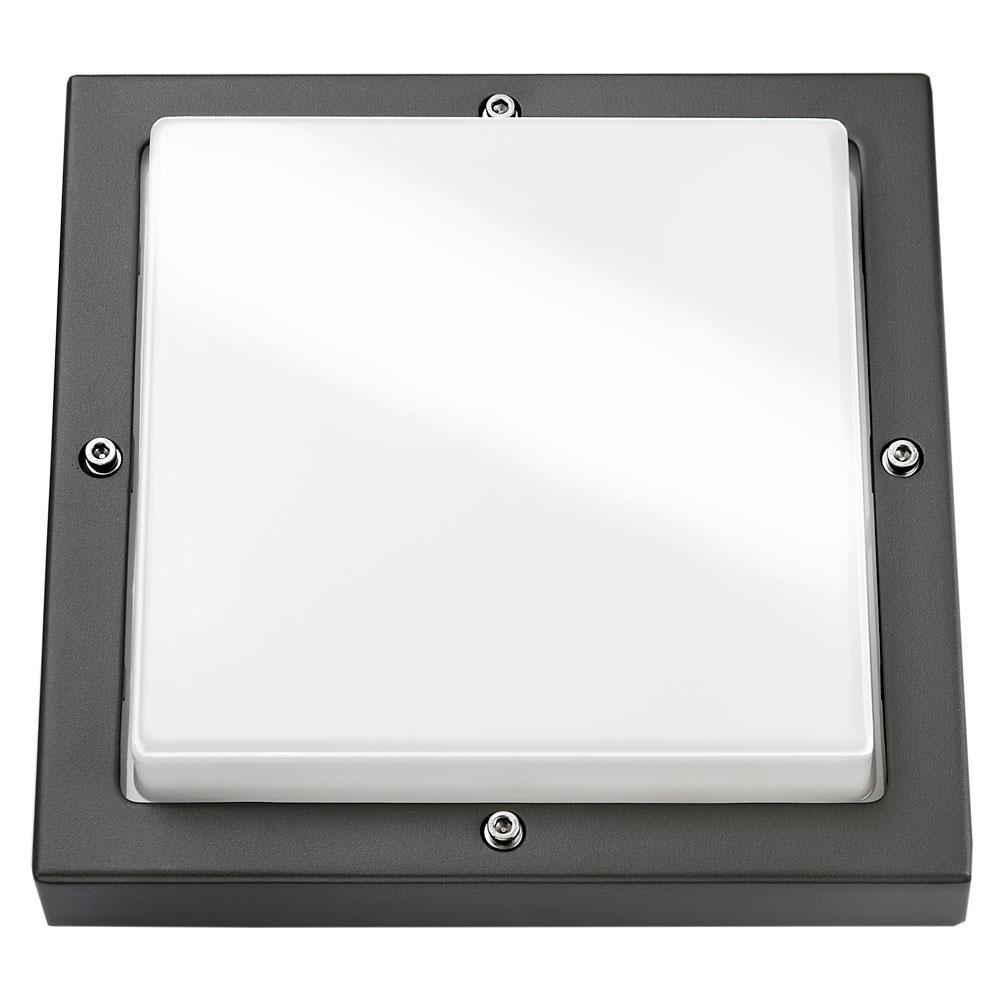 Bassi Grafit 10W LED m/sensor