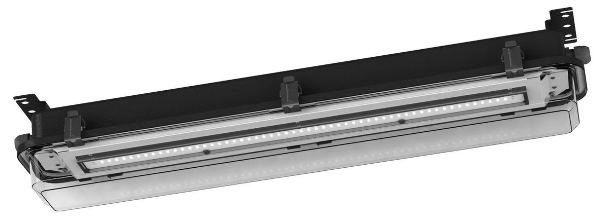 EXF300LED-0600-F1-35E-33-11P20-NIRO-PC Rustfri stål/Polycarbonat