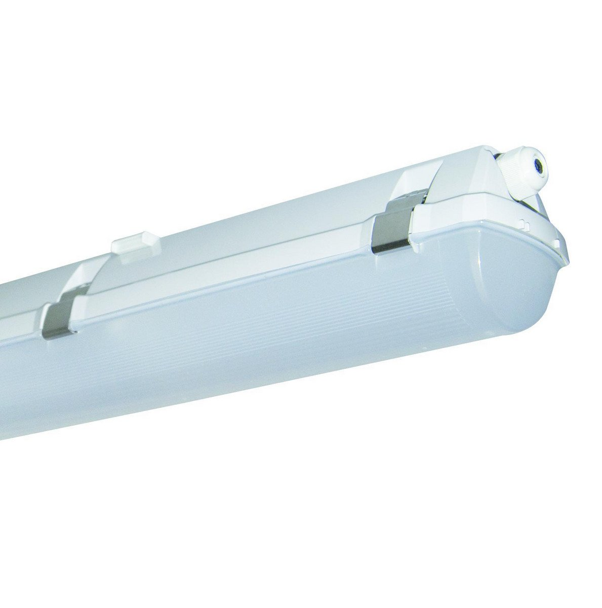 prima LED Agri 1200 3200/840 IP66